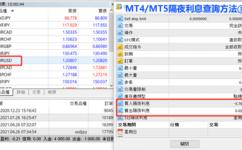 怎樣在MT4/MT5交易平台上查詢外匯隔夜利息?